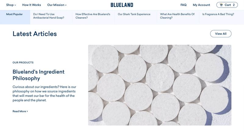 Modular blog homepage