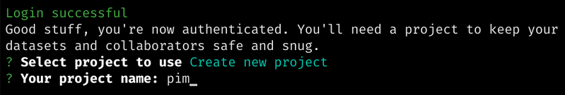 Project name prompt in the Sanity CLI