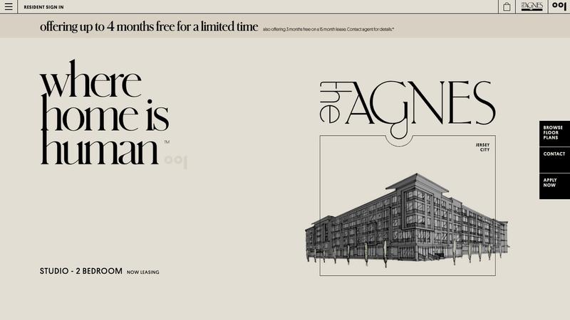Homepage intro