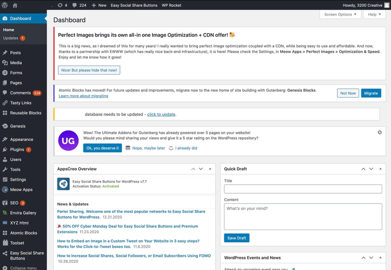 WordPress view after logging in