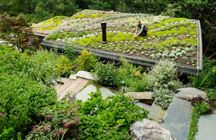lady gardening on a living roof build with clinkaFILL aggregate
