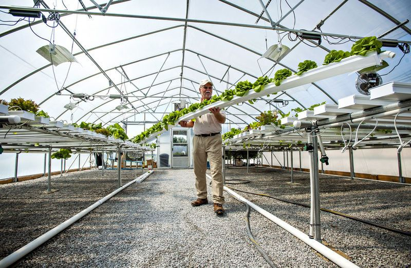greenhouse with clinkaFILL flooring