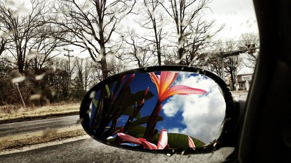 View from a side mirror