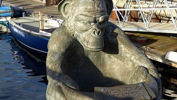 Hartlepool Monkey