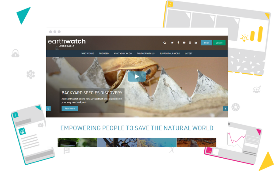Non-profit website build