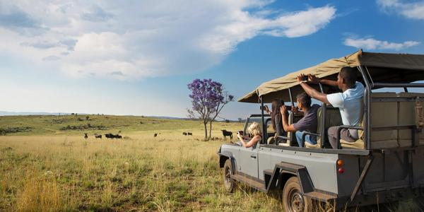 Dinokeng Safari day trip