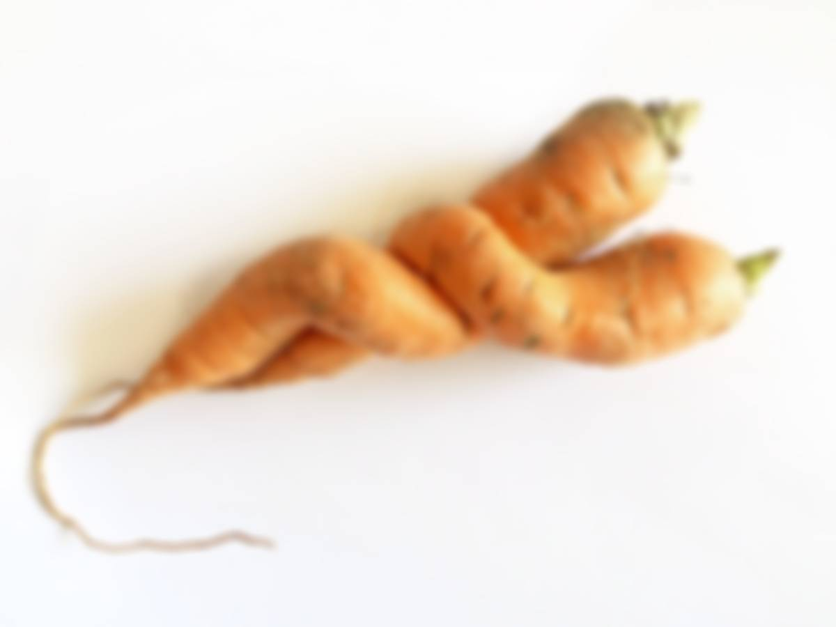 two carrots in an embrace