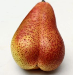 Phallic Fruit Friday