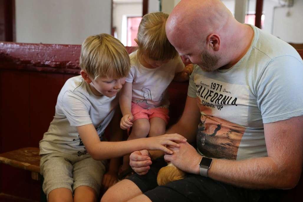 Barn og faren deres hilser på marsvin på bondegård.