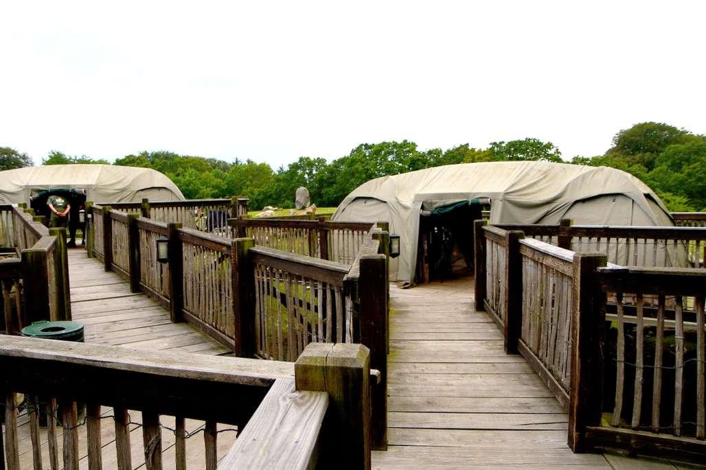 I telt på savannen. Det er spennende å ligge i telt, mens du hører ulven ule og løven brøle like i nærheten. Foto: Ree Park Safari