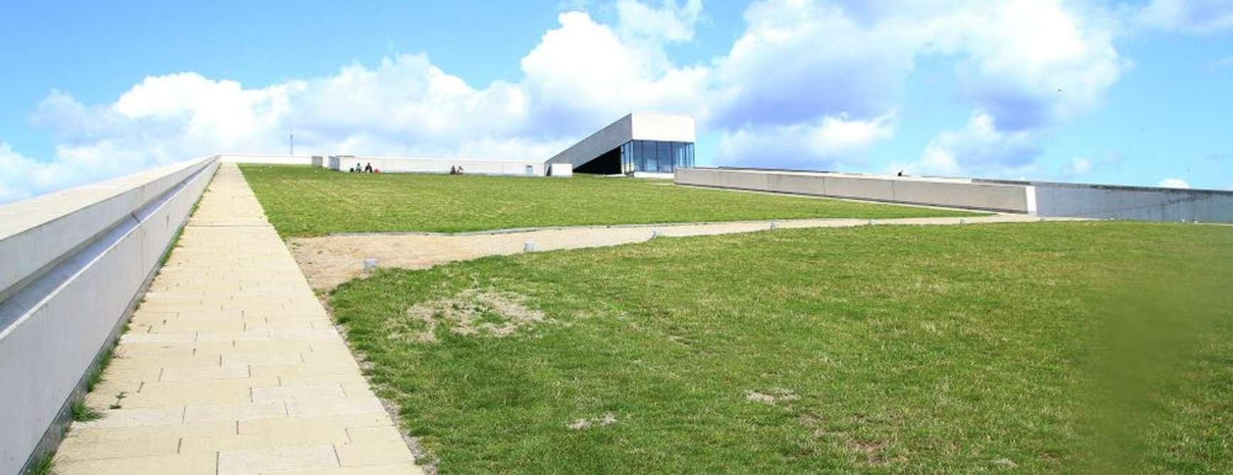 Moesgaard Museum sør for Aarhus, ligger nydelig plassert. Stedet er ypperlig for en utflukt. Her får du både i kulturell pose og naturskjønn sekk. Foto: Fjord Line
