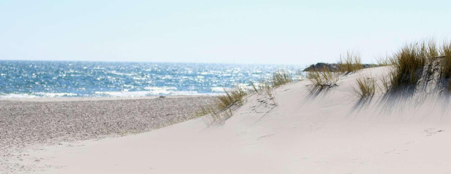 Fantastiske strender. I Danmark er du aldri lenger unna havet enn 50 kilometer. Her fra Skagen. Foto: Fjord Line