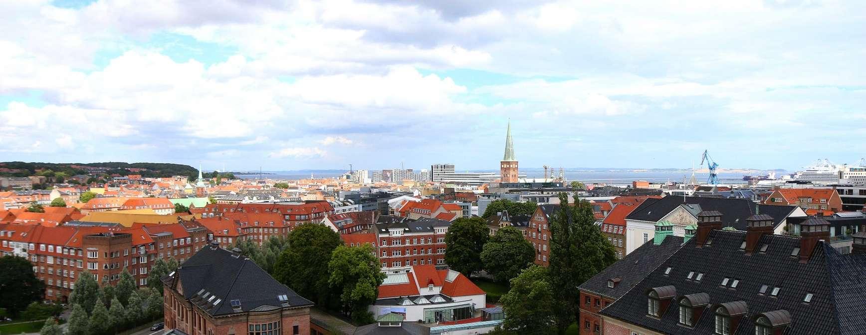 Et skue over Aarhus fra et av byens mange tak