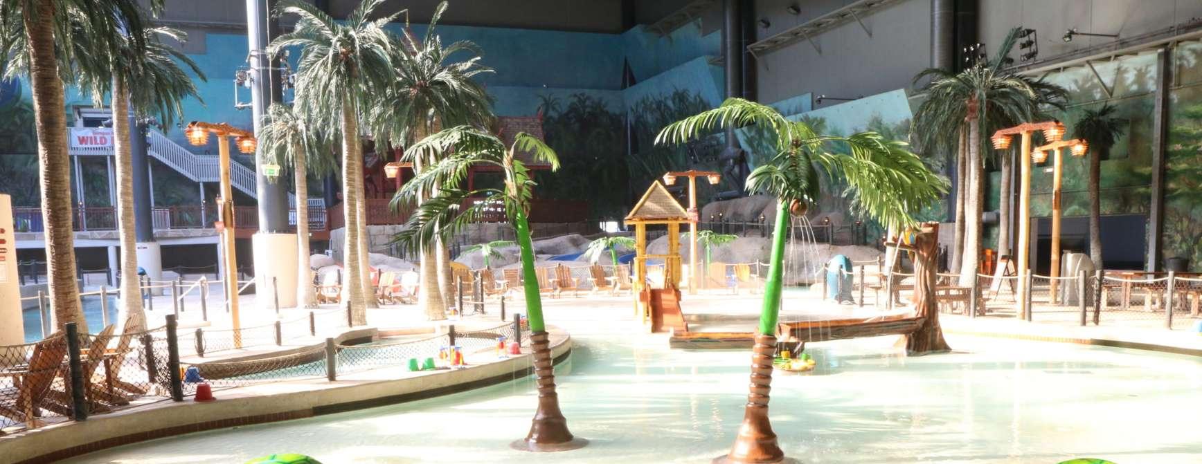Badeland med vann, palmer og badeleker.