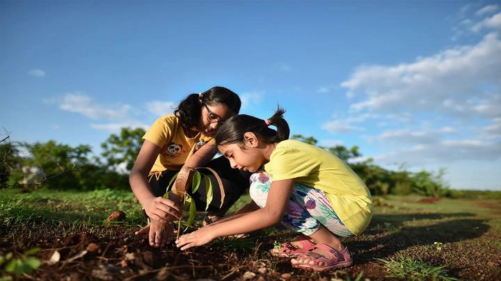 Two children planting a plant in the ground