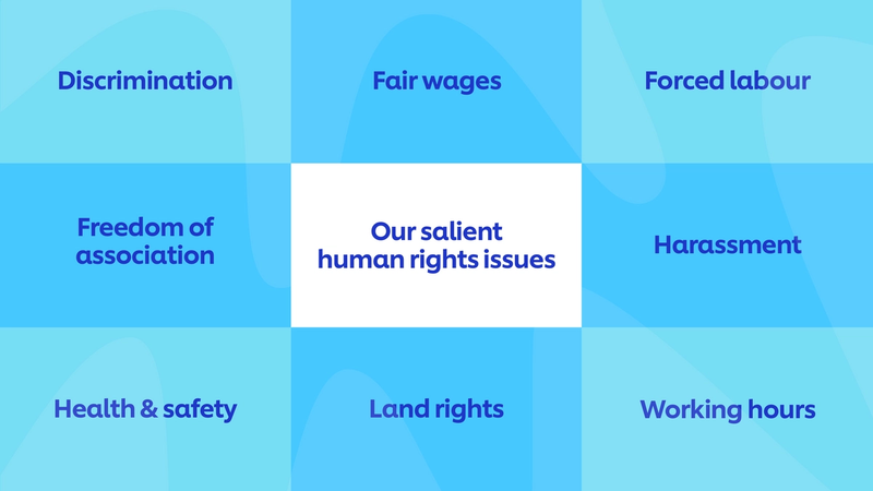 Unilever's eight salient issues