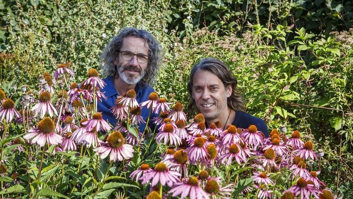 Pukka herbs founders