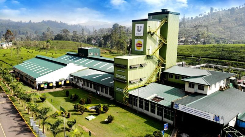Unilever Sri Lanka's Ceytea Factory in Agarapathana