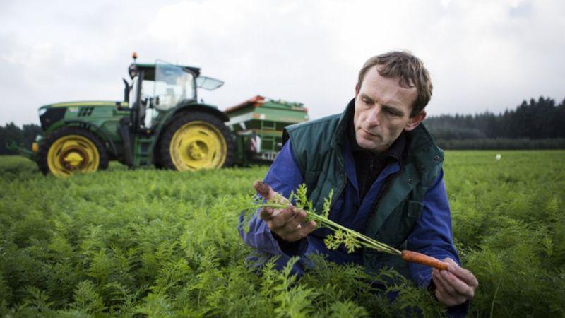 Unilever cuida de los agricultores y del entorno.