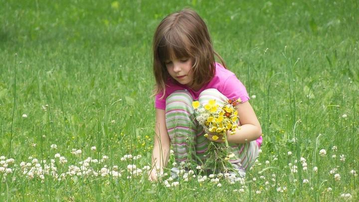 Child picking flowers in grass field