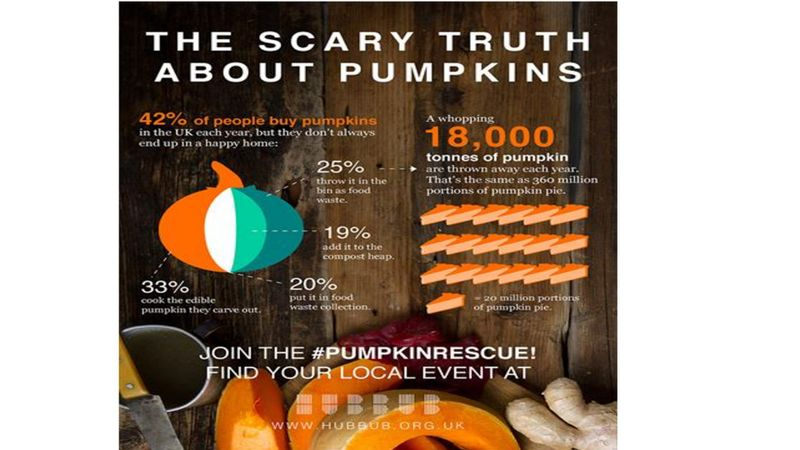 pumpkinrescue infographic