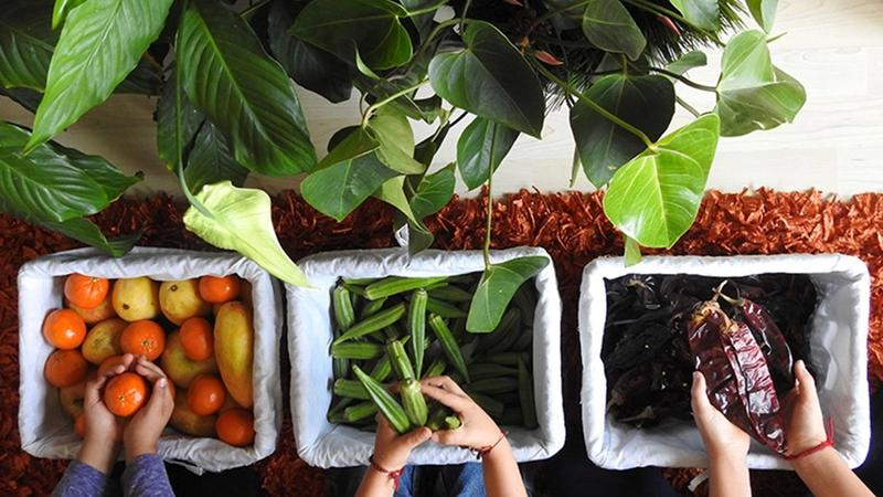Three baskets in a row containing orange tangerines, green okra and brown cocoa beans