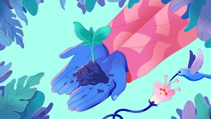 Ellerimizdeki toprak parçasından çıkan çiçek filizi görseli