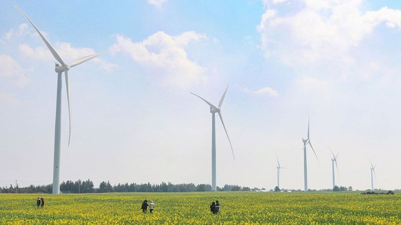Wind turbines stand in a field with people watching them