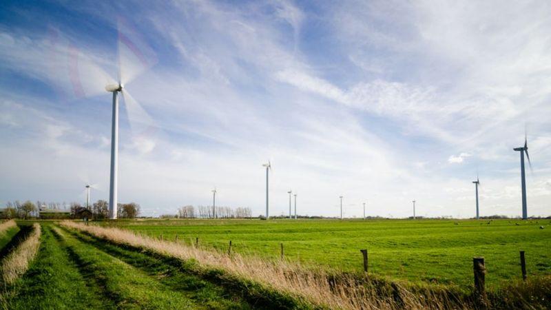 wind grass farm