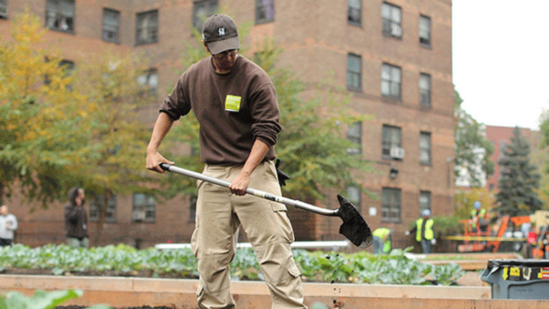 Green City Force Corps member at Wagner Farms