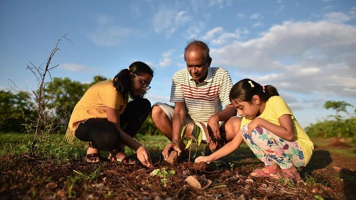 Man and young girls planting veg