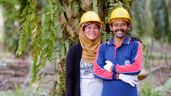 Two smiling smallholder farmers standing beside their oil palms