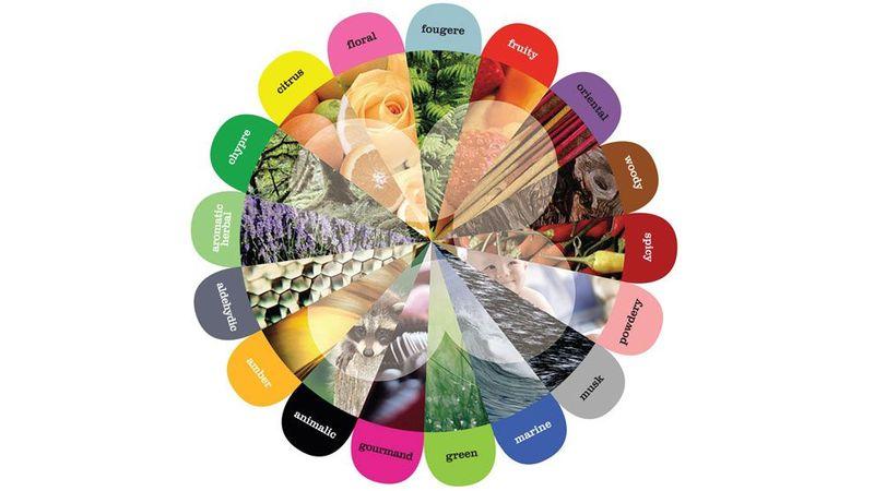 Unilever Flower wheel