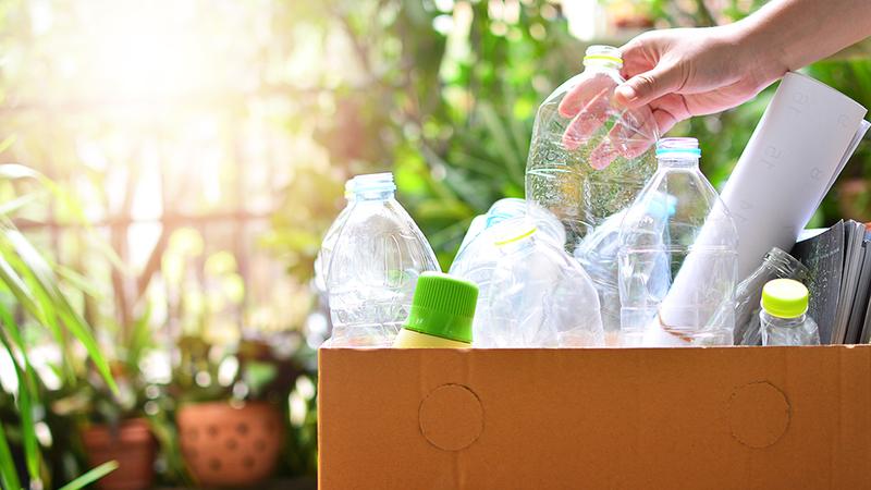 Plastic bottles in a box