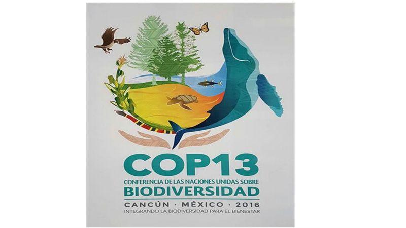 Logotipo COP13 2016