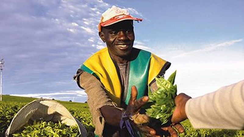 What We Eat Can Nourish The World - Farmer