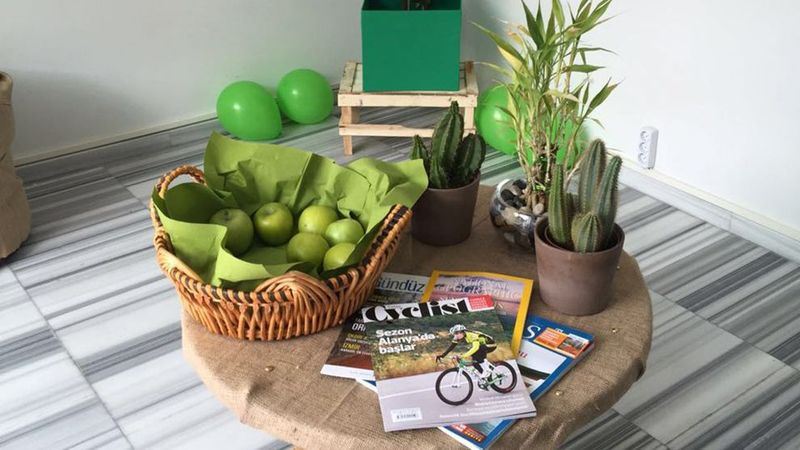 Apples and cactus on a table