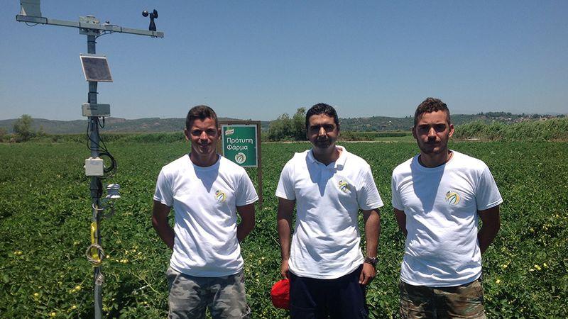 Feature image - tomato farmers