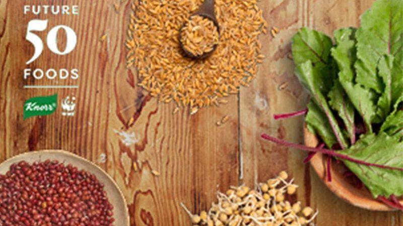 Knorr 50 Future Foods