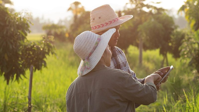 Young Asian farming couple using digital tablet monitoring in a field