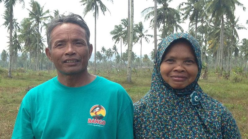 Feature image - Two coconut smallholder farmers