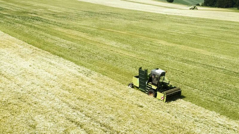 A farmer collecting his crop on a tractor