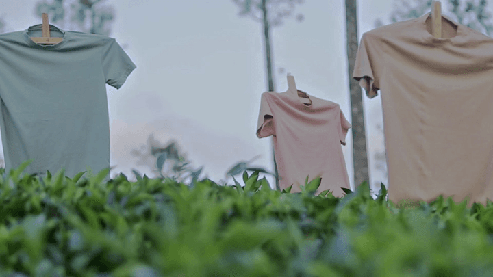 T-shirts in a field