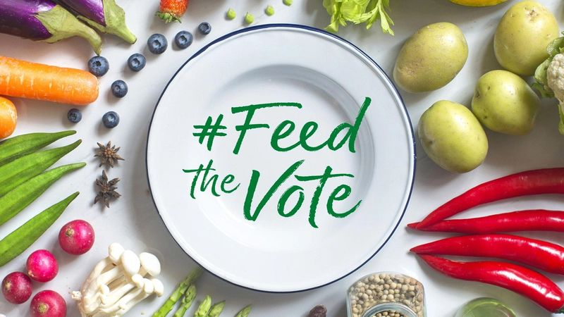 White plate with #Feed the Vote written on it, surrounded by an attractive pattern of fruit and vegetables