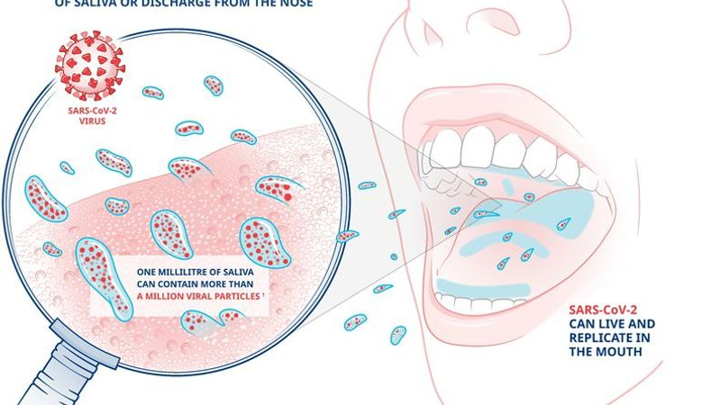 A diagram illustrating how Covid-19 is spread primarily through droplets of saliva or discharge from the nose