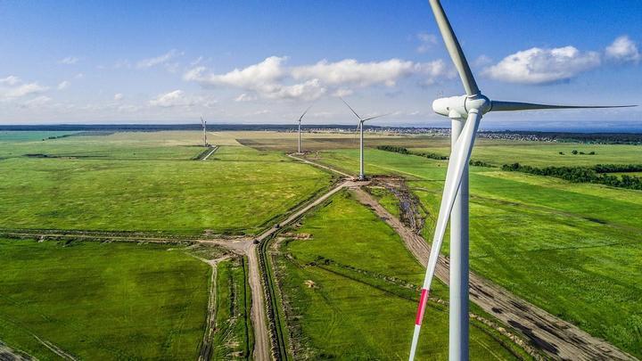 Renewable Grid Electricity