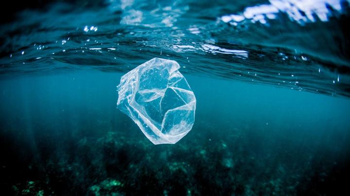 A photograph of a plastic bag floating through the ocean.