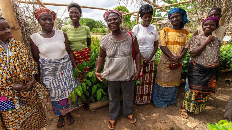 A group of women cocoa farmers.