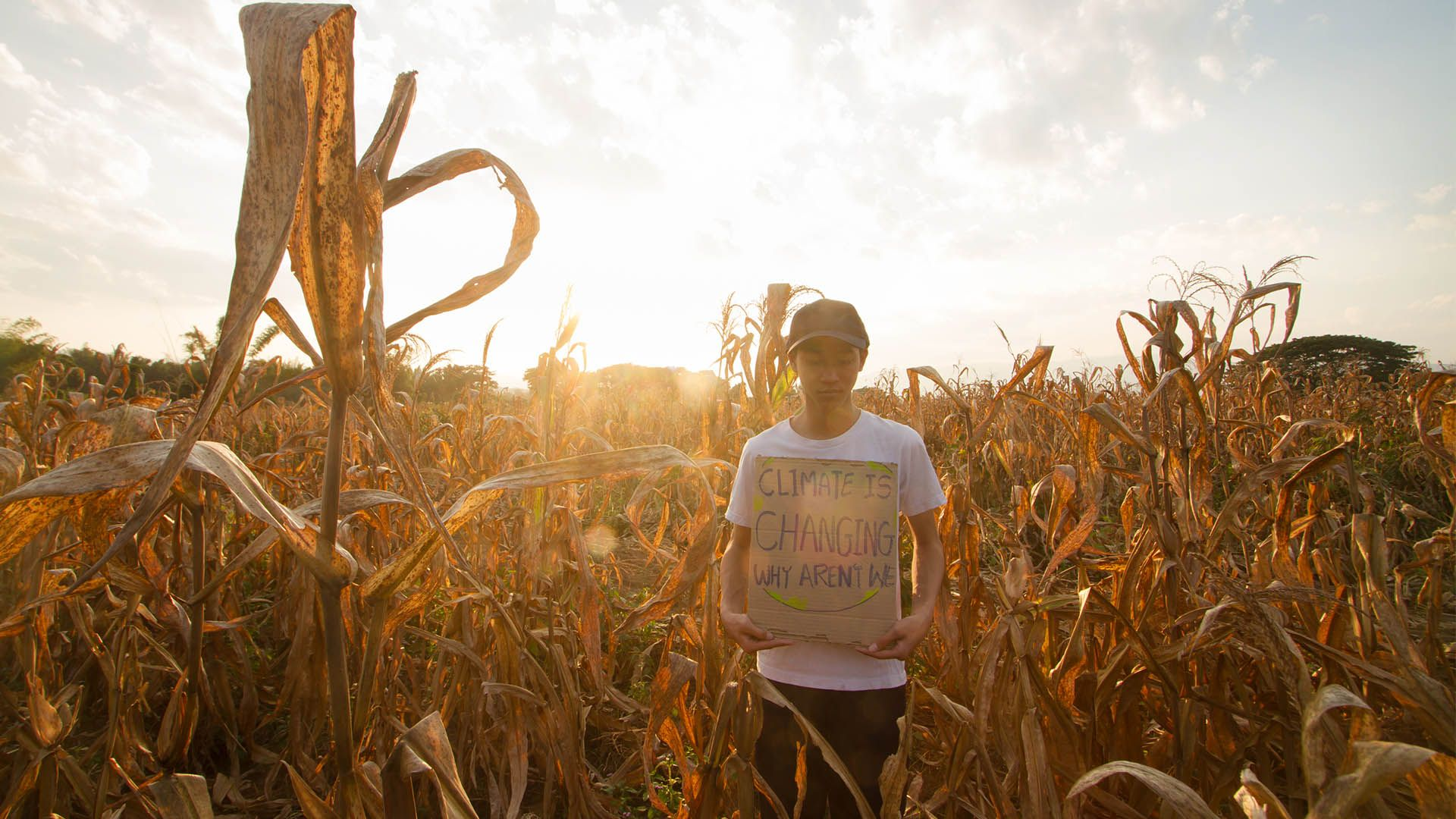 Boy holding a sign in a field of crops