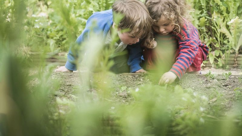 Two children looking at soil